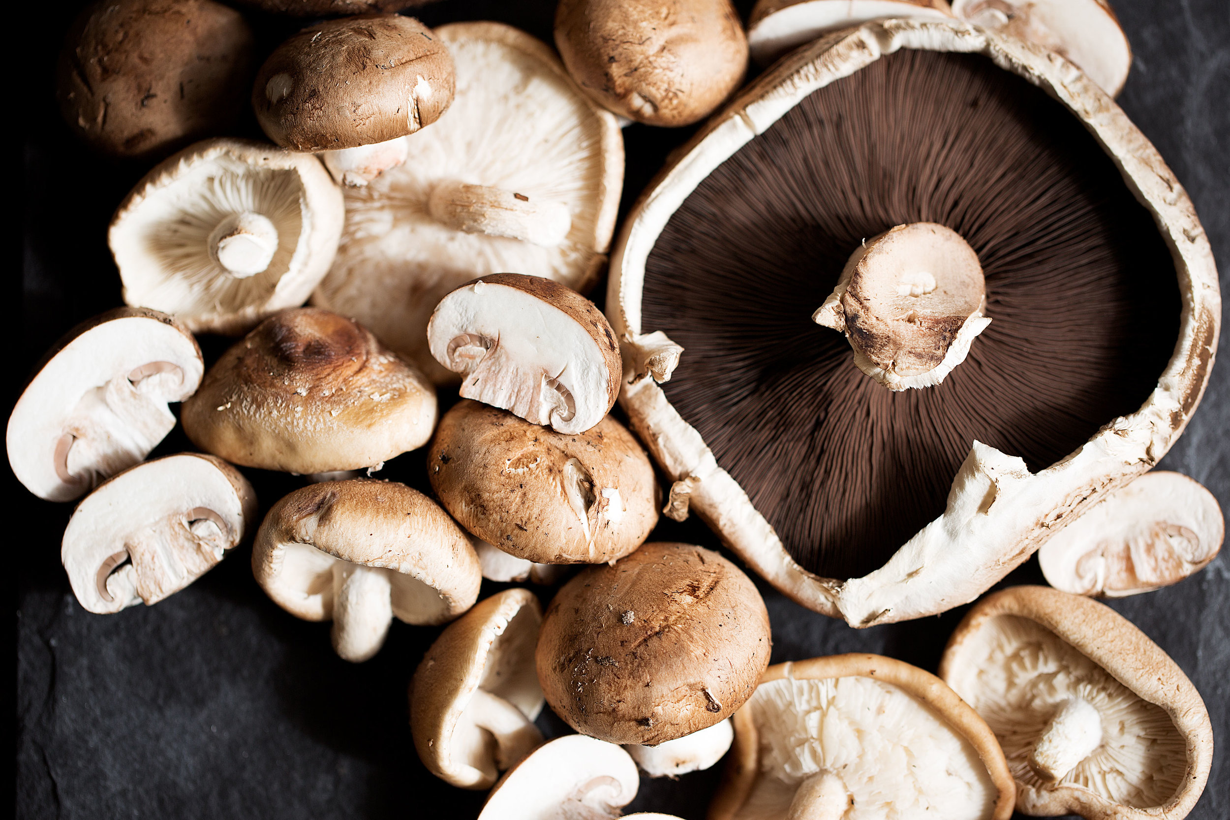 raw food photography mixed mushrooms
