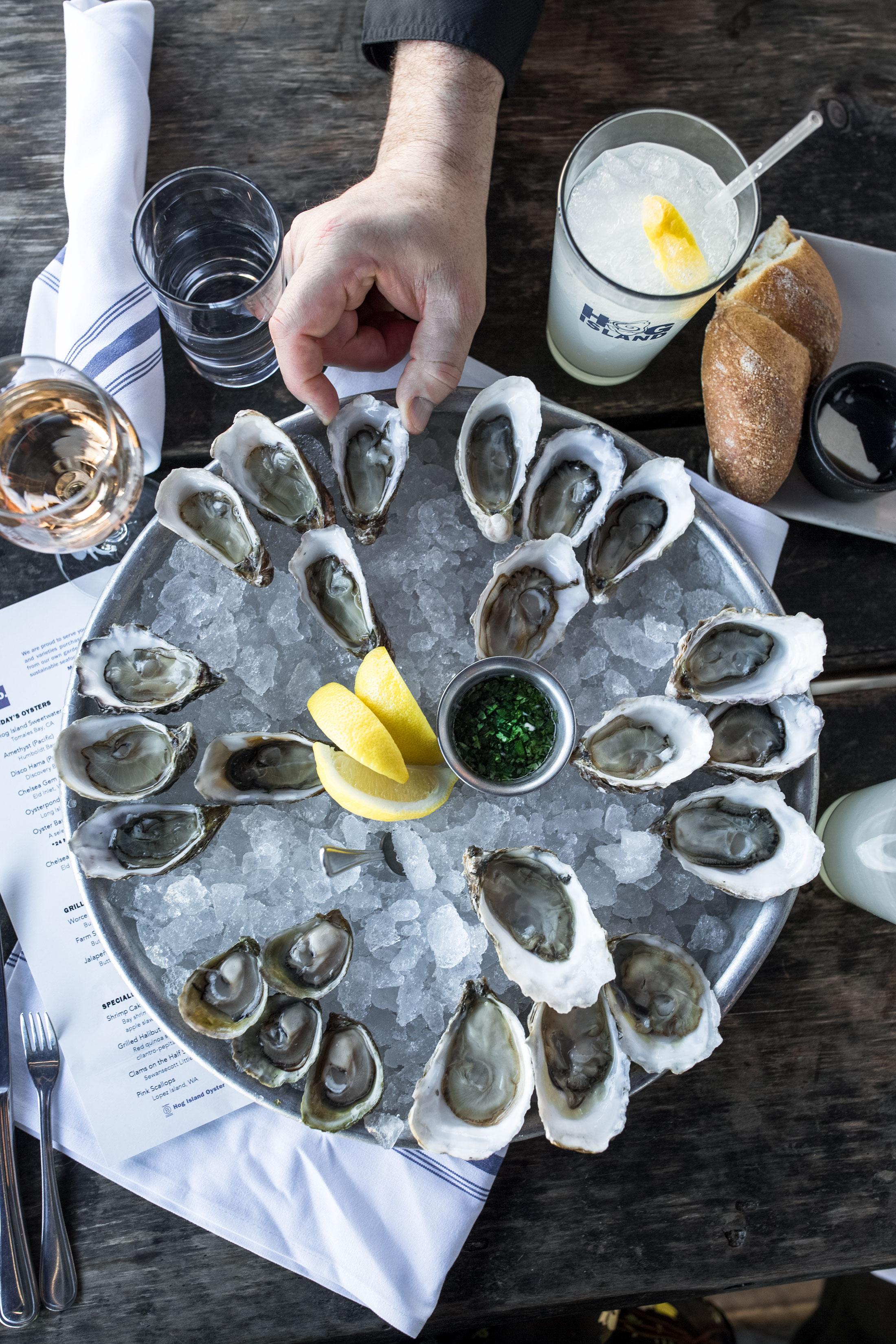 Hog-Island-Oysters-Napa-CA-2.jpg