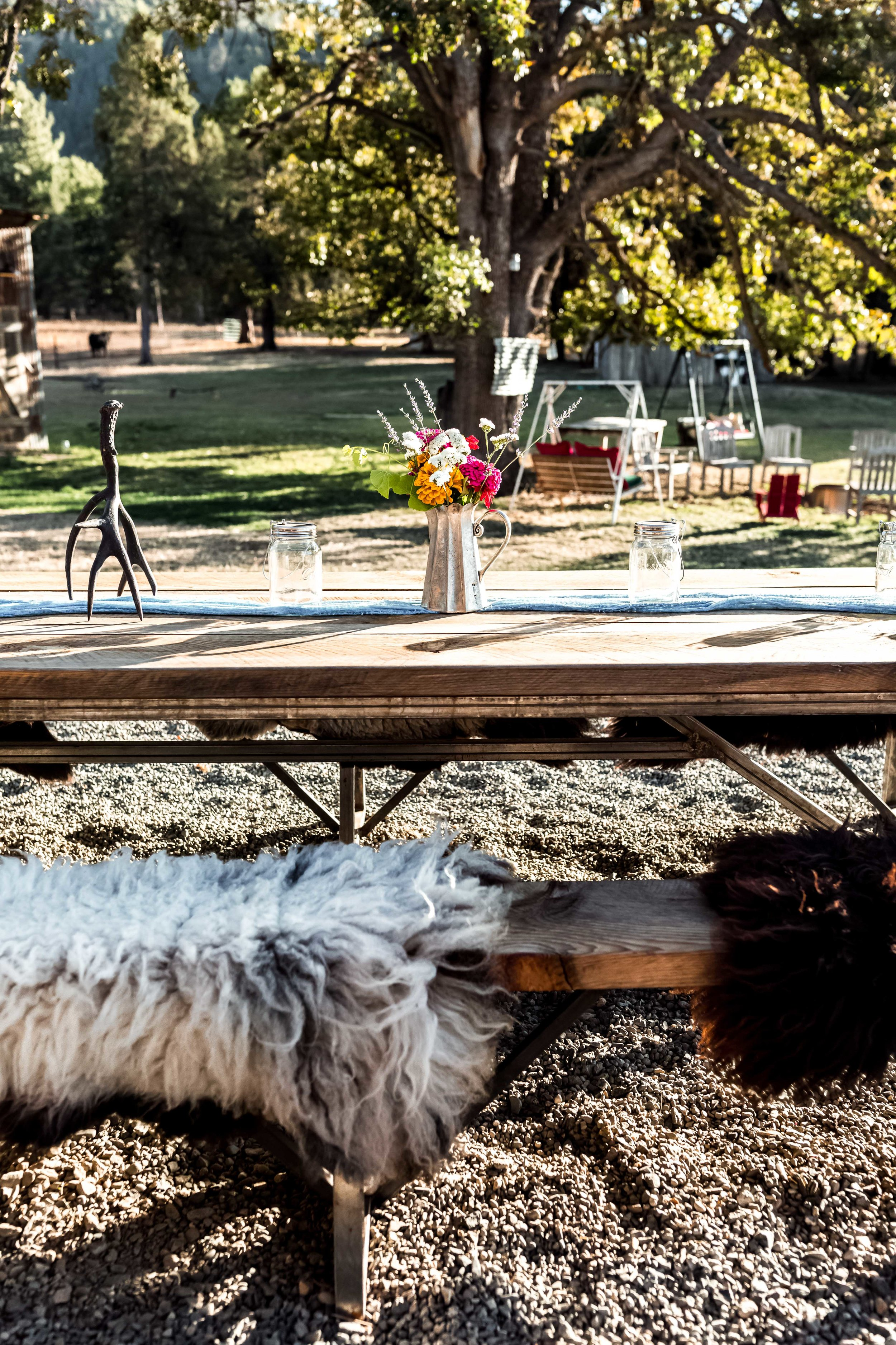 five marys farm with american lamb cooking with cocktail rings table