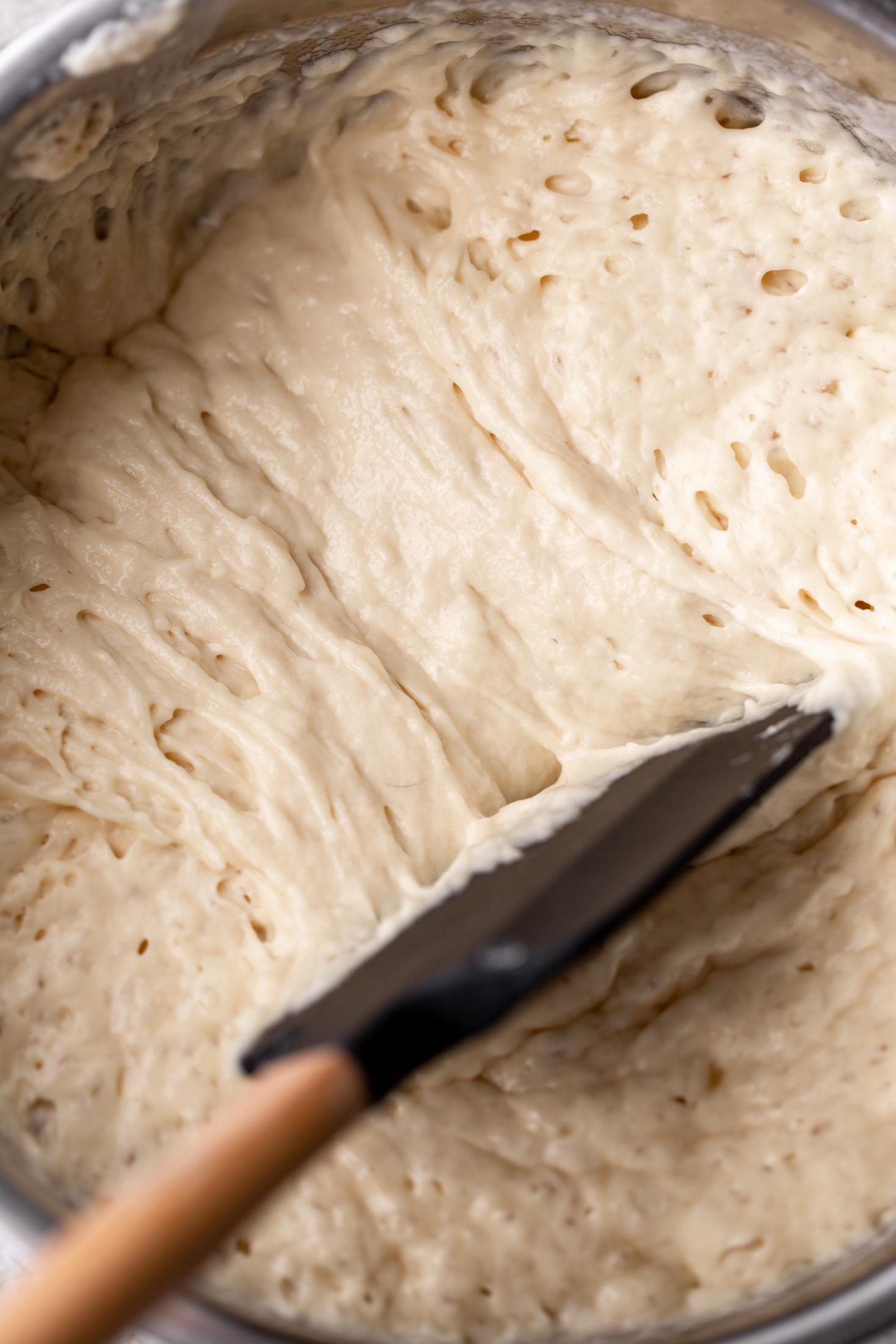 yeasty waffle mix let rise overnight