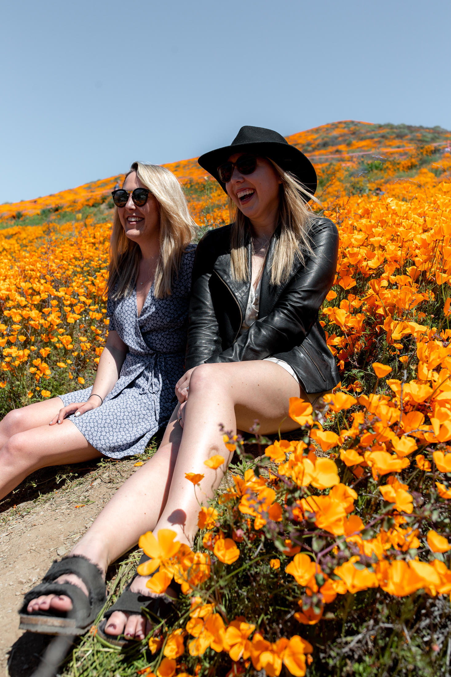 super bloom-43.jpg