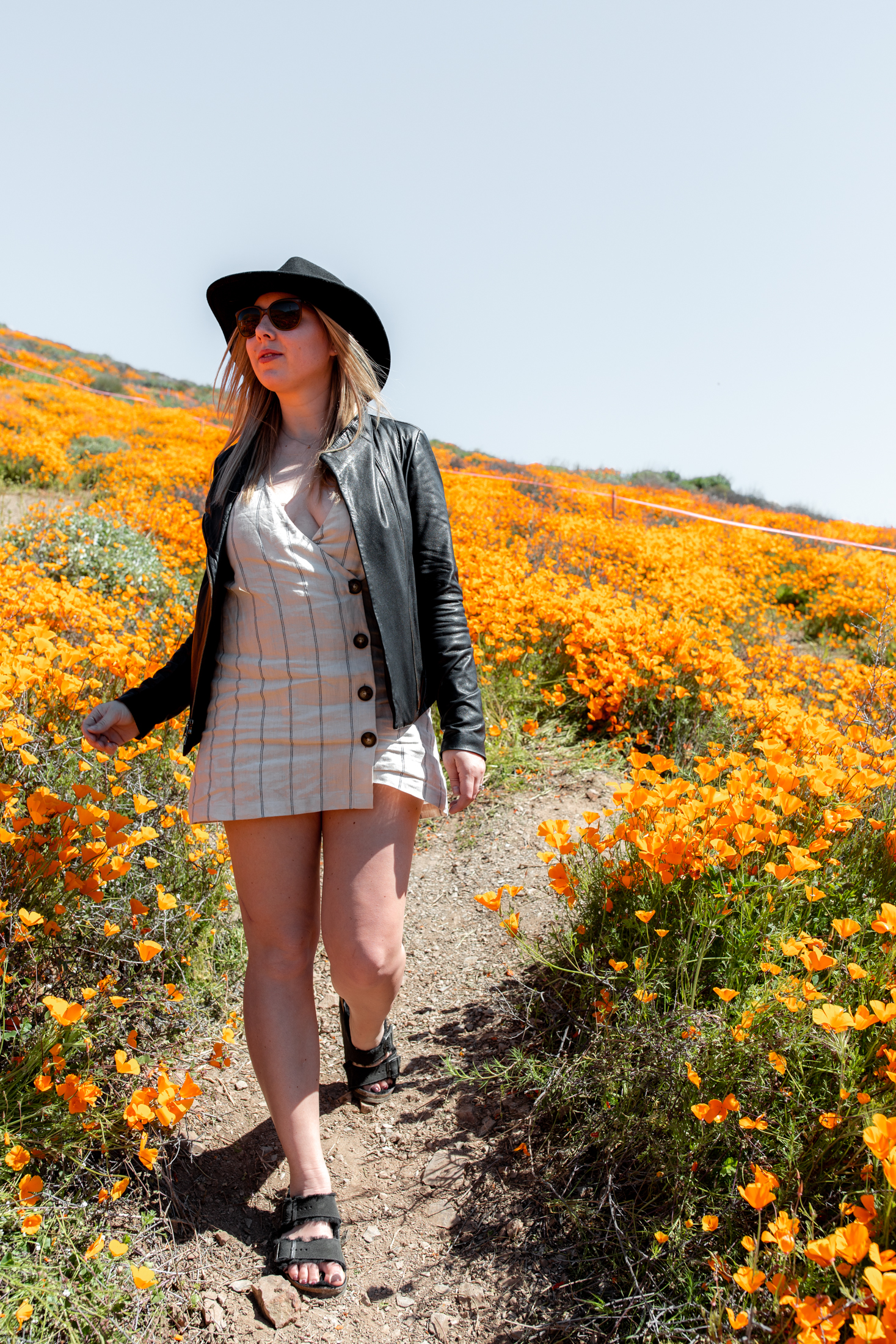 "California Day-trip: Lake Elsinore Poppy ""Super Bloom"" lifestyle"