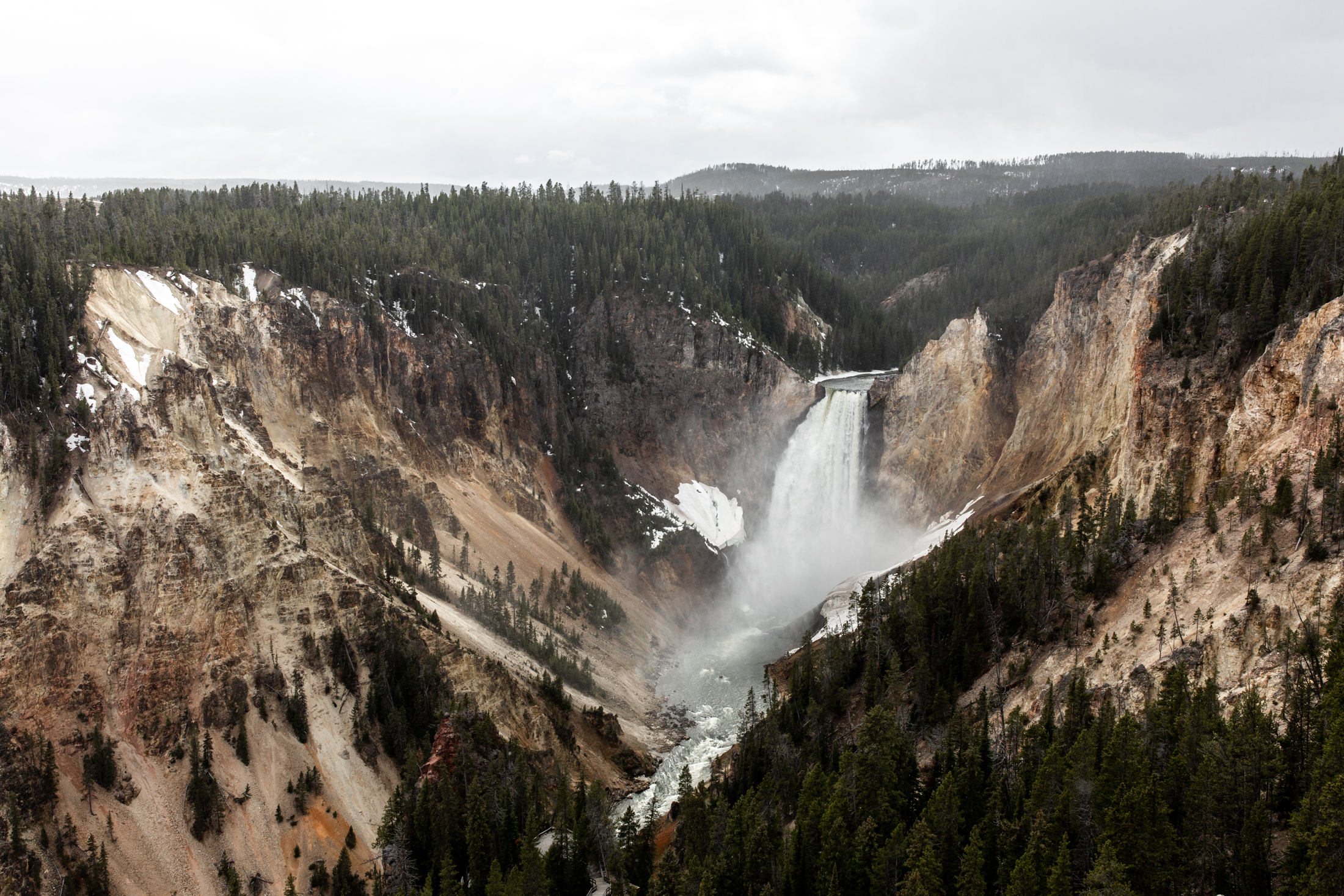 Yellowstone national park Montana