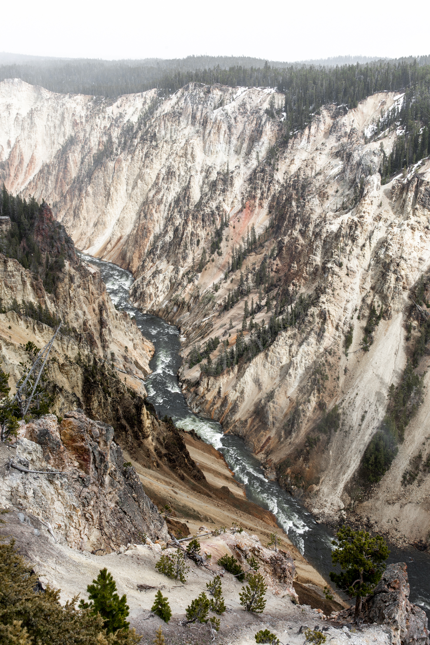 grand canyon of the Yellowstone national park Montana