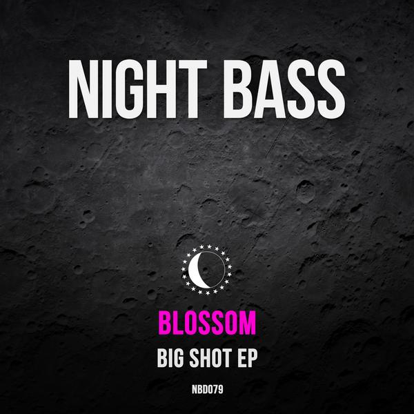"Phoenix-based Blossom has been performing at our Arizona Night Bass shows for years and we're beyond excited to introduce her first Night Bass release. The EP blasts off with the title track featuring high energy vocals from the one and only TT The Artist. ""DYTAM"" keeps the vibe rolling along with a slightly darker vibe leading into ""Anime"", a fidgety bass banger featuring guest bars by Outlaw. We're very excited to welcome Blossom to the family."