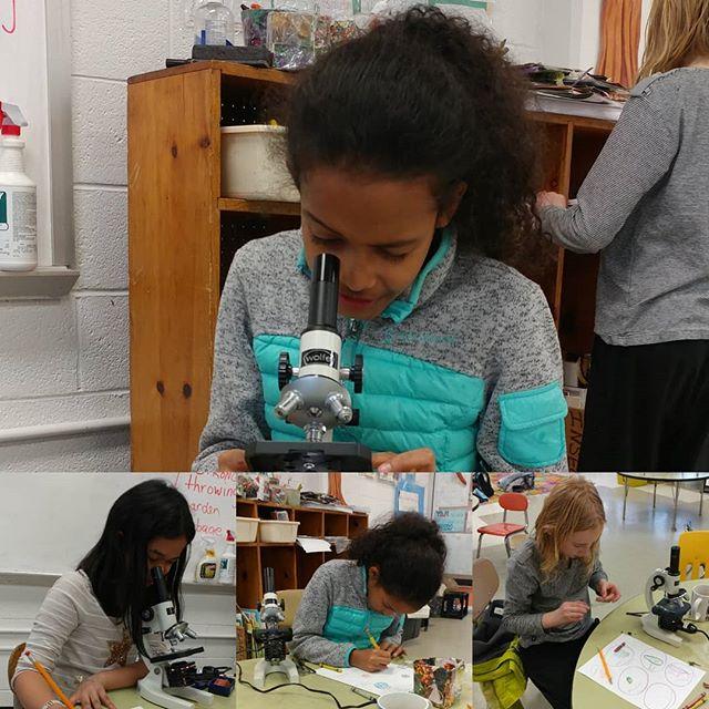 A little #science to start your Sunday. #microscopes #microscopy #girlsinSTEM #STEMgirls #WomeninSTEM #WOCinSTEM #FiLS #livelearnshare