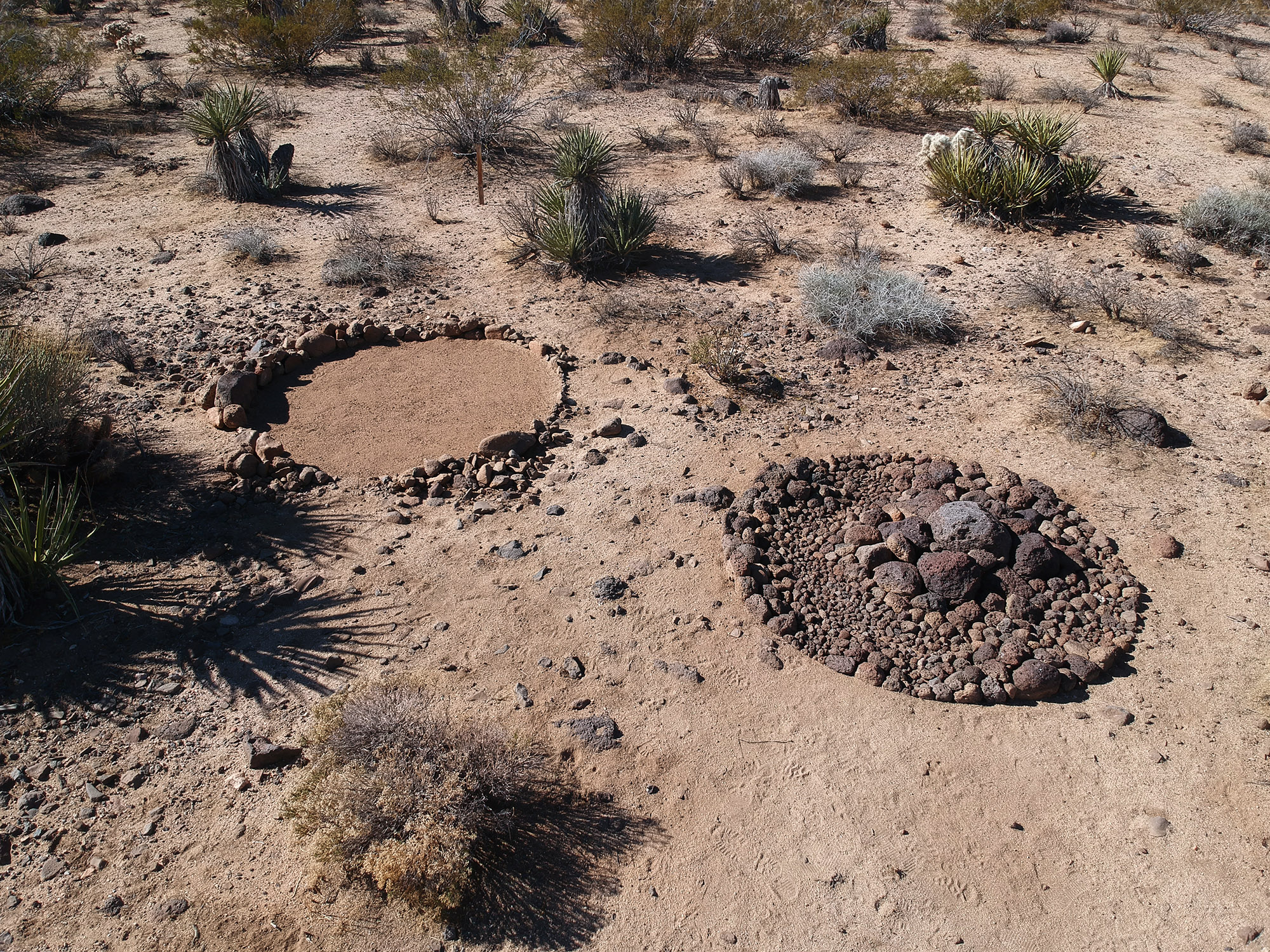 "-  Outside the garden there is a land art project consisting of two nine foot circles with lava rocks ""Nocturnal Animals/Janus"" Andres PayanMaterials: Lava Rocksapprox 12' x 20' 2017"