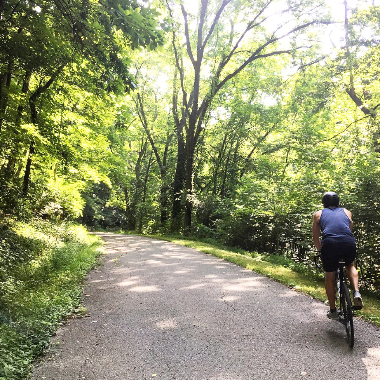 We biked and hiked in Percy Warner Park - one of our favorites!