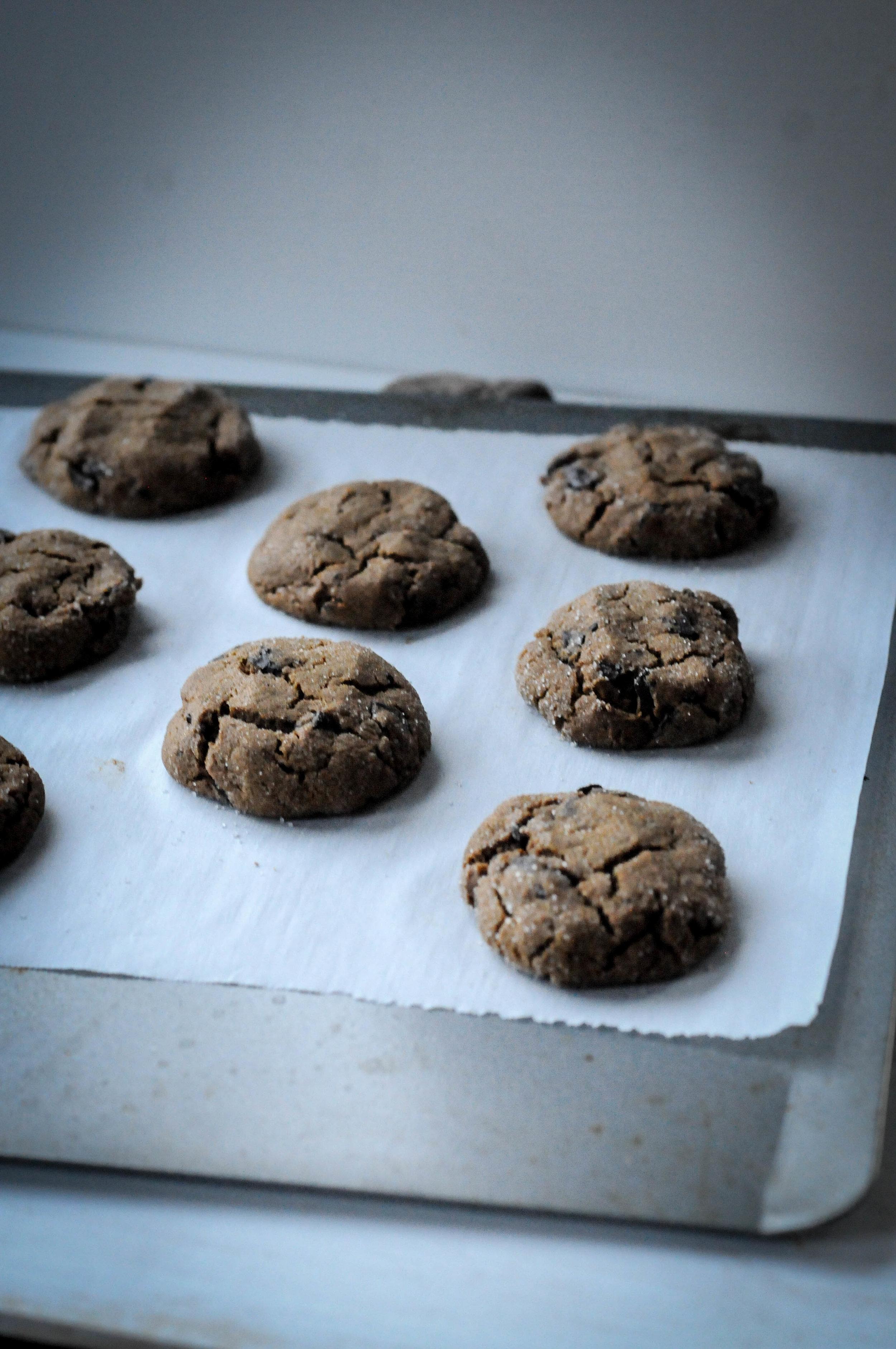 11-11-17 cookie (8 of 10).jpg
