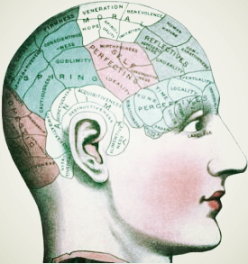 Brain Company original.jpeg
