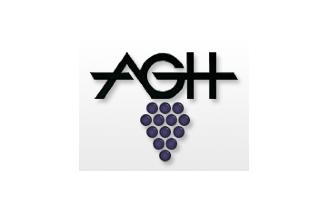 Logo+AGH.png