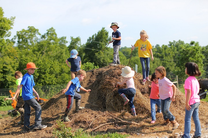 Campers exploring compost.JPG