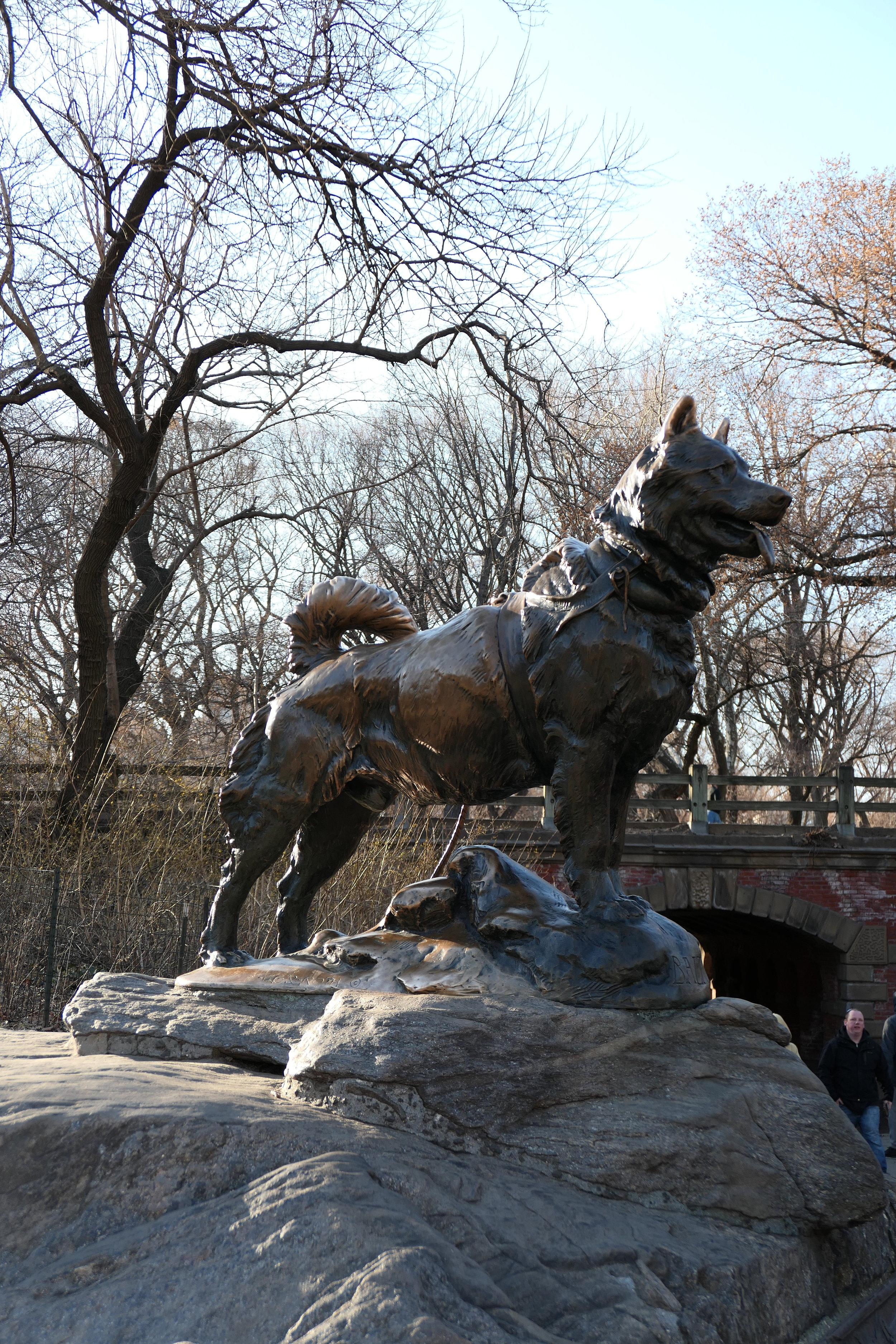 Lead Dog Balto Statue in central Park