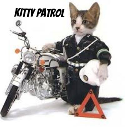 kitty patrol option 2.jpg