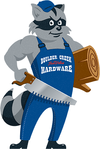 BCH Racoon Mascot Illustration
