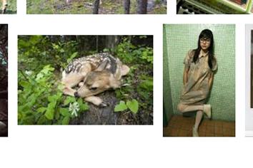 Quanta_Deer 2.png