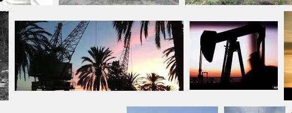 Hard/drive♢google-image-search-screenshot.Millicent_Hawk