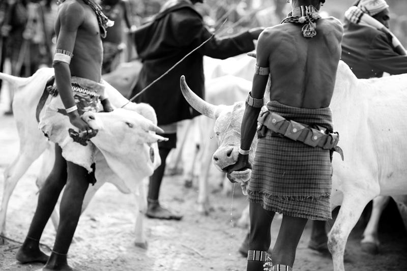 jessicadavisphotography.com | Jessica Davis Photography | Portrait Work in Ethiopia | Travel Photographer | World Event Photographs _ (19).jpg