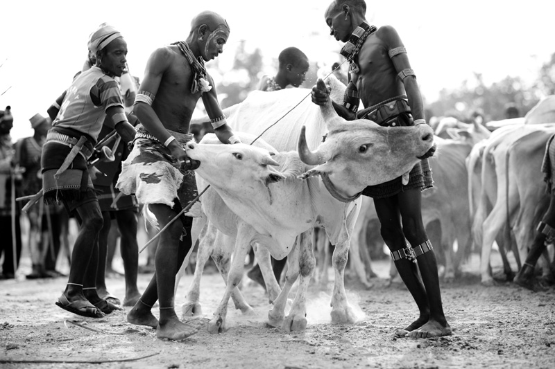 jessicadavisphotography.com | Jessica Davis Photography | Portrait Work in Ethiopia | Travel Photographer | World Event Photographs _ (21).jpg