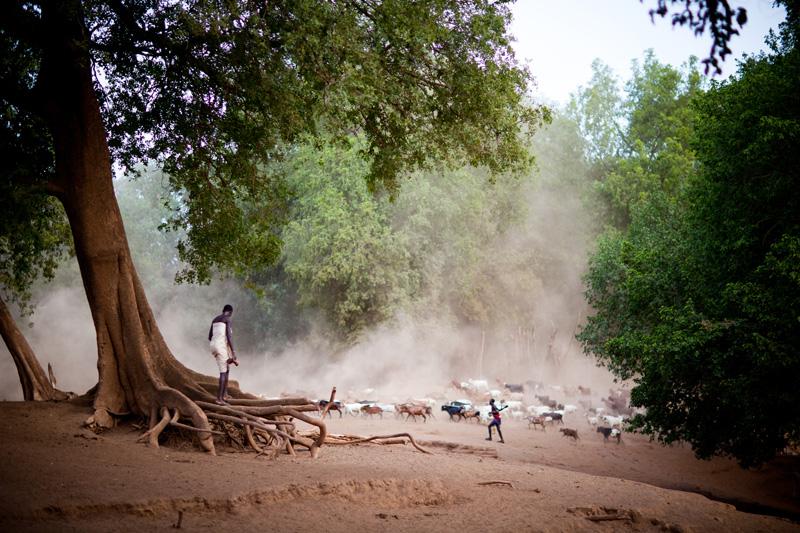 jessicadavisphotography.com | Jessica Davis Photography | Portrait Work in Ethiopia | Travel Photographer | World Event Photographs _ (29).jpg