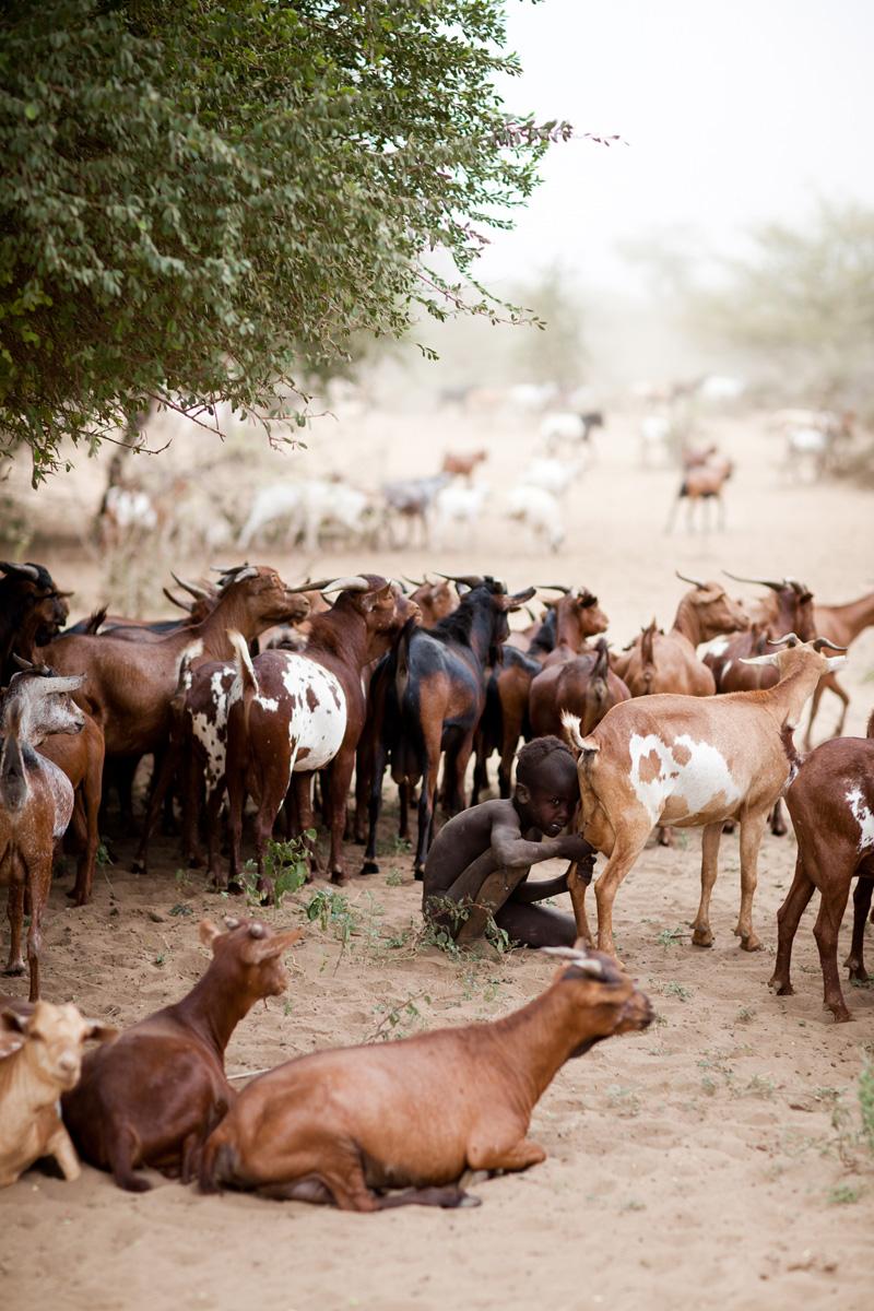 jessicadavisphotography.com | Jessica Davis Photography | Portrait Work in Ethiopia | Travel Photographer | World Event Photographs _ (33).jpg