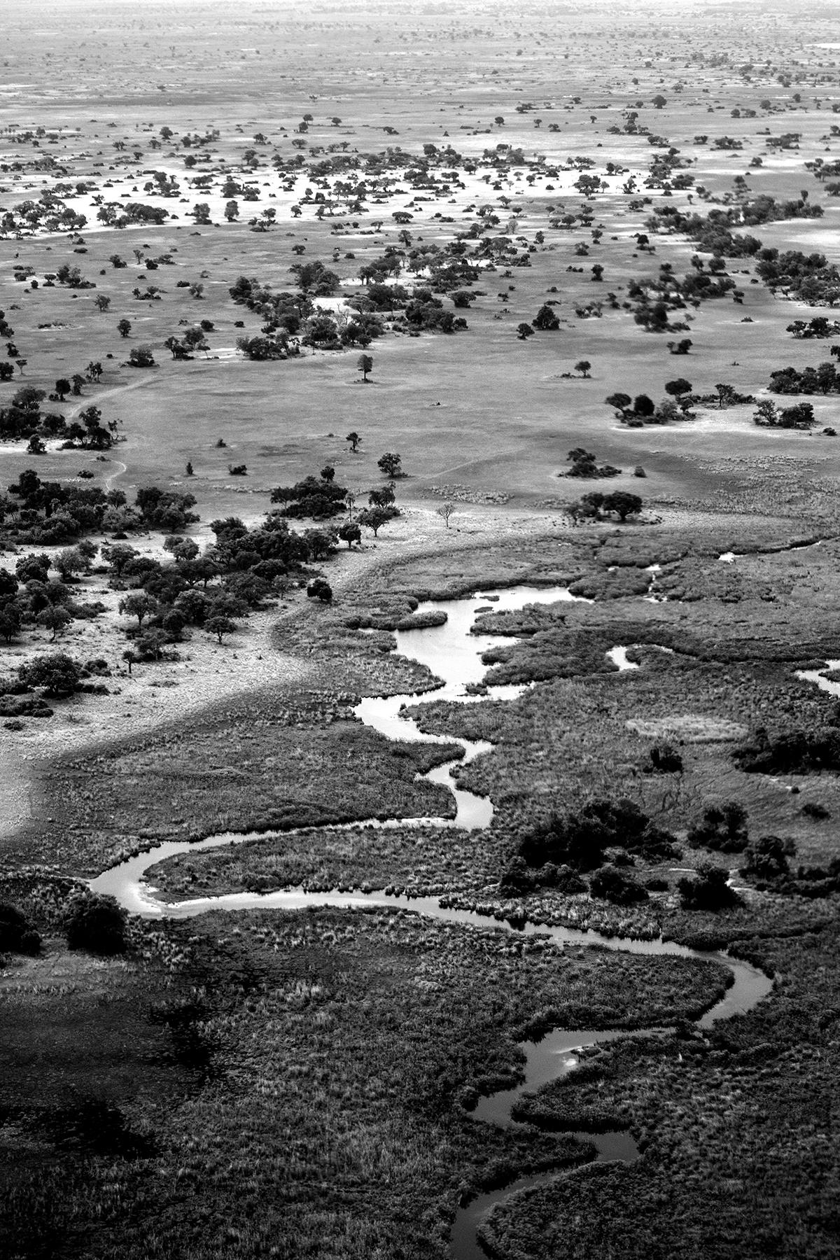 2018JDP_Botswana-1bw.jpg