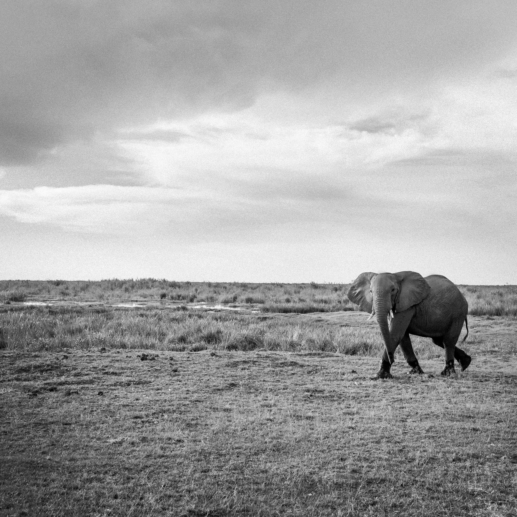 2018JDP_Botswana-32.jpg
