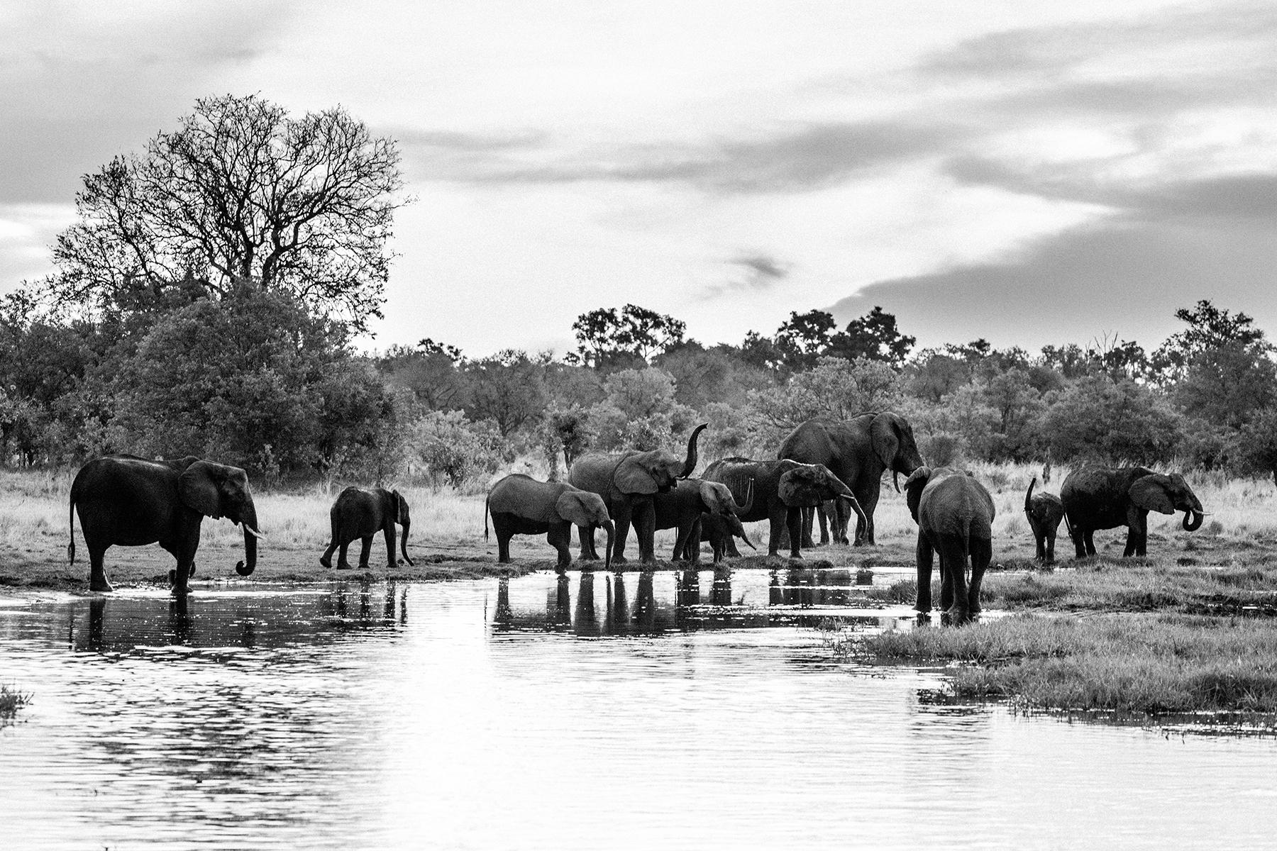 2018JDP_Botswana-44.jpg
