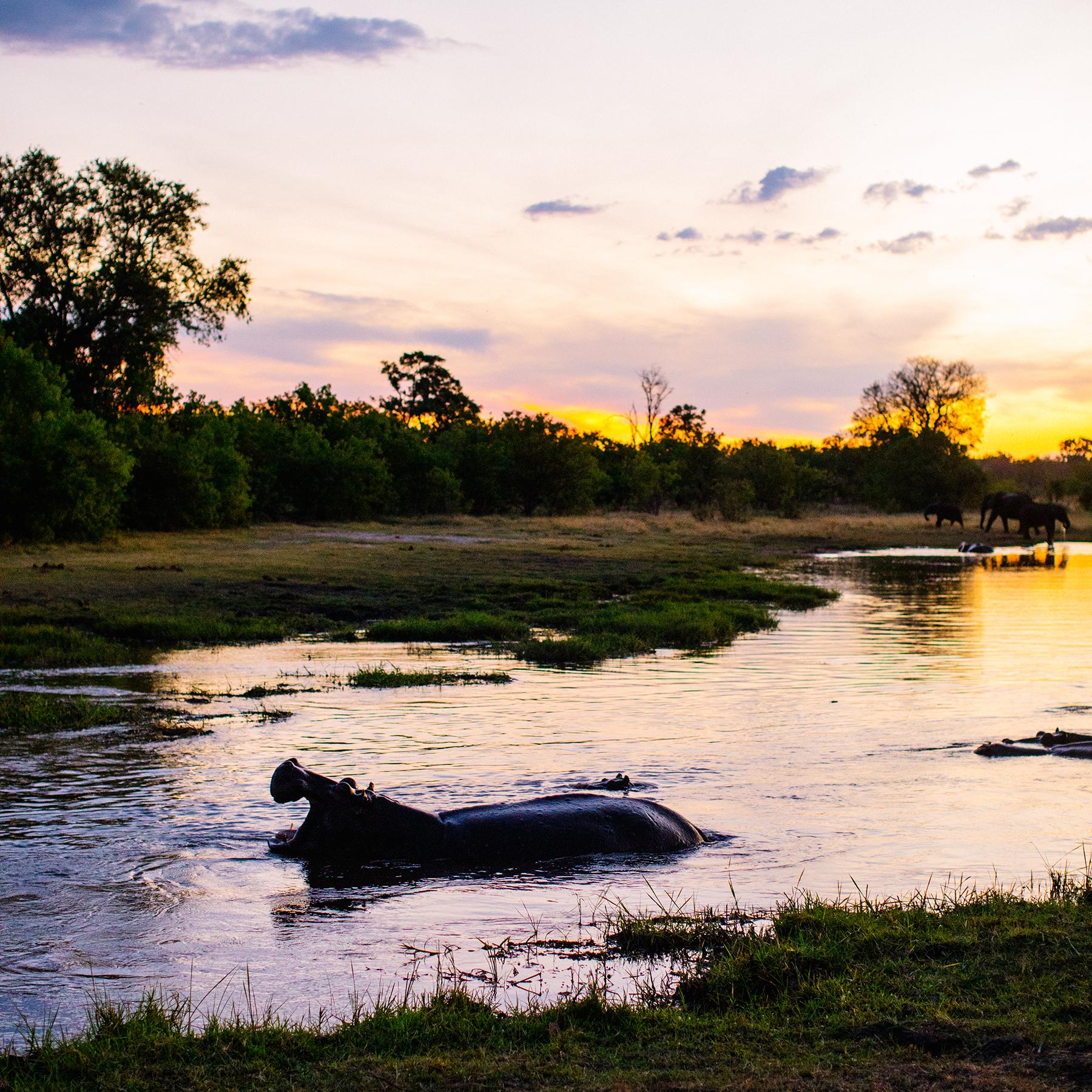 2018JDP_Botswana-46.jpg