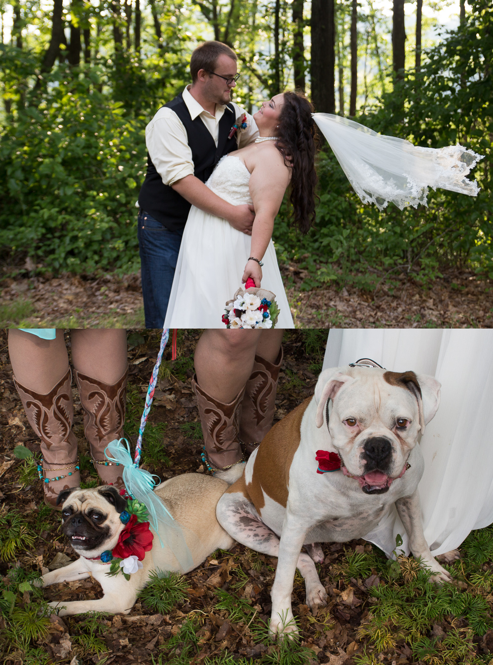 Not only were the horses a huge part of they day, so were the brides Boxer Hero, and the maid of honors Pug, Piccadilly. Cutest ring bearer and flower girl ever.