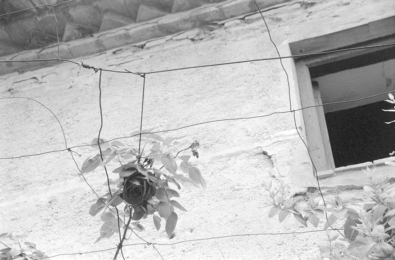 Massif_Tamborello_Gallery3_014.jpg