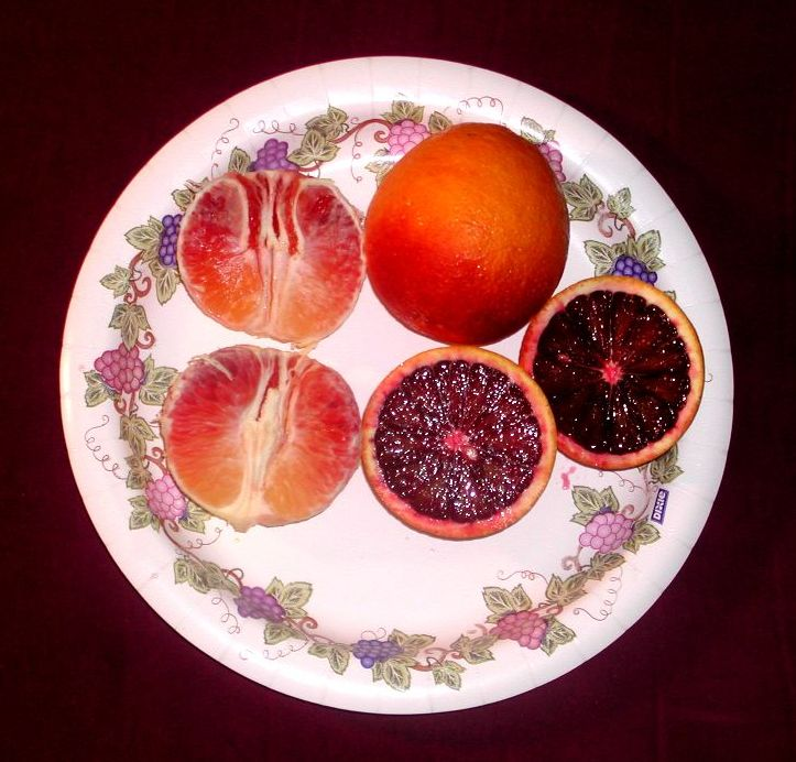 Blood_oranges.jpg