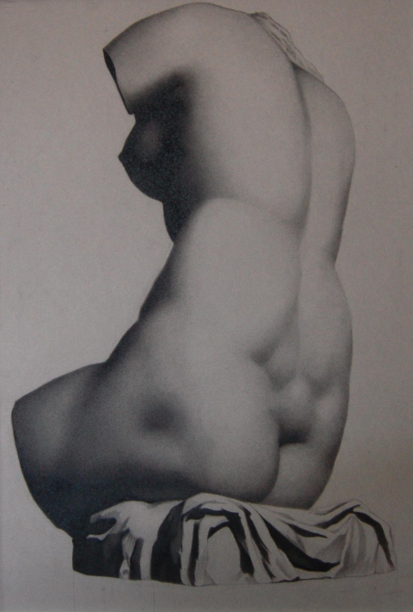 Female Torso Bargue