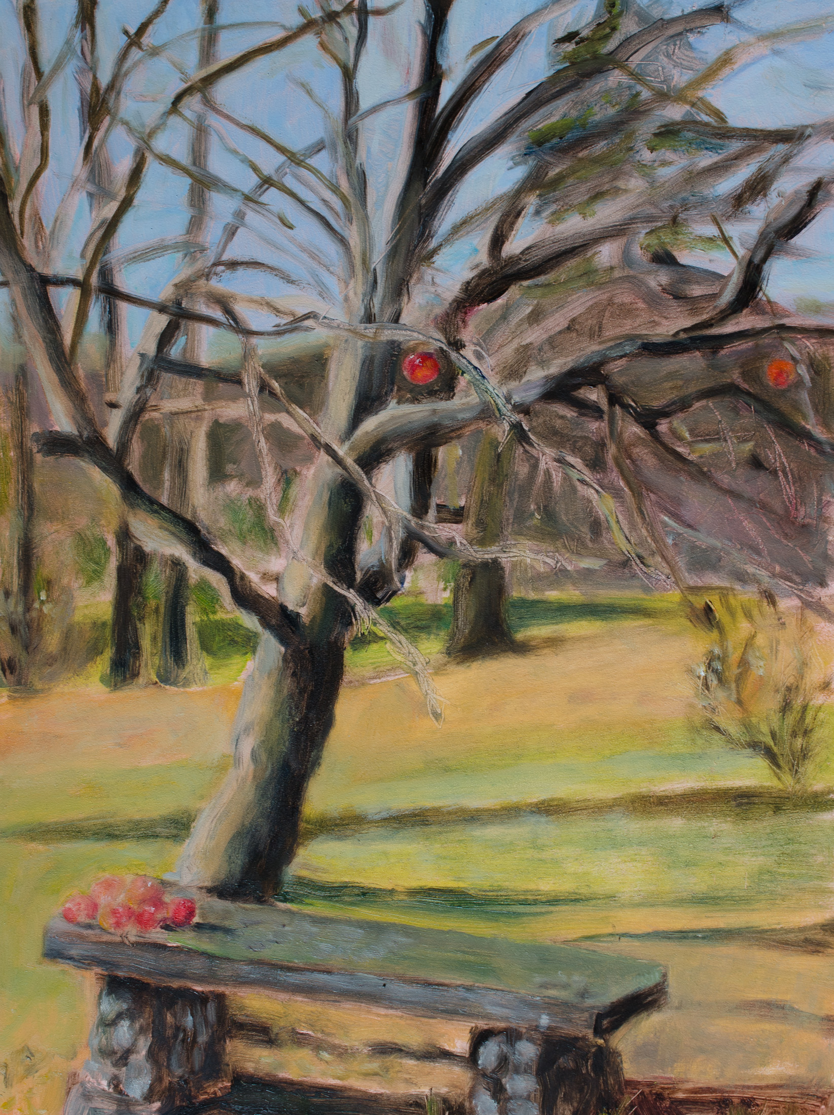 Last Apples of Autumn