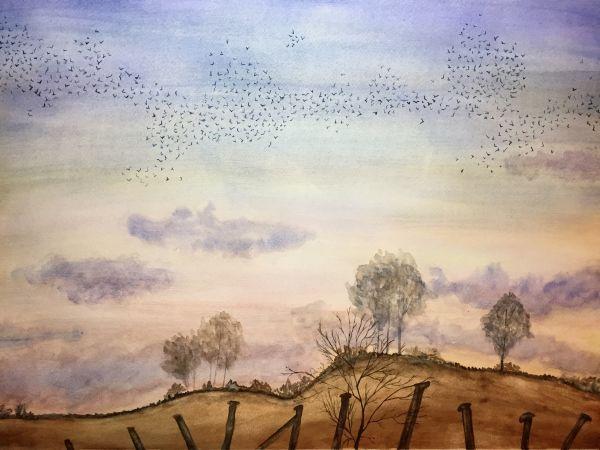 """""""Murmuration"""" watercolor by Kate Brandes"""