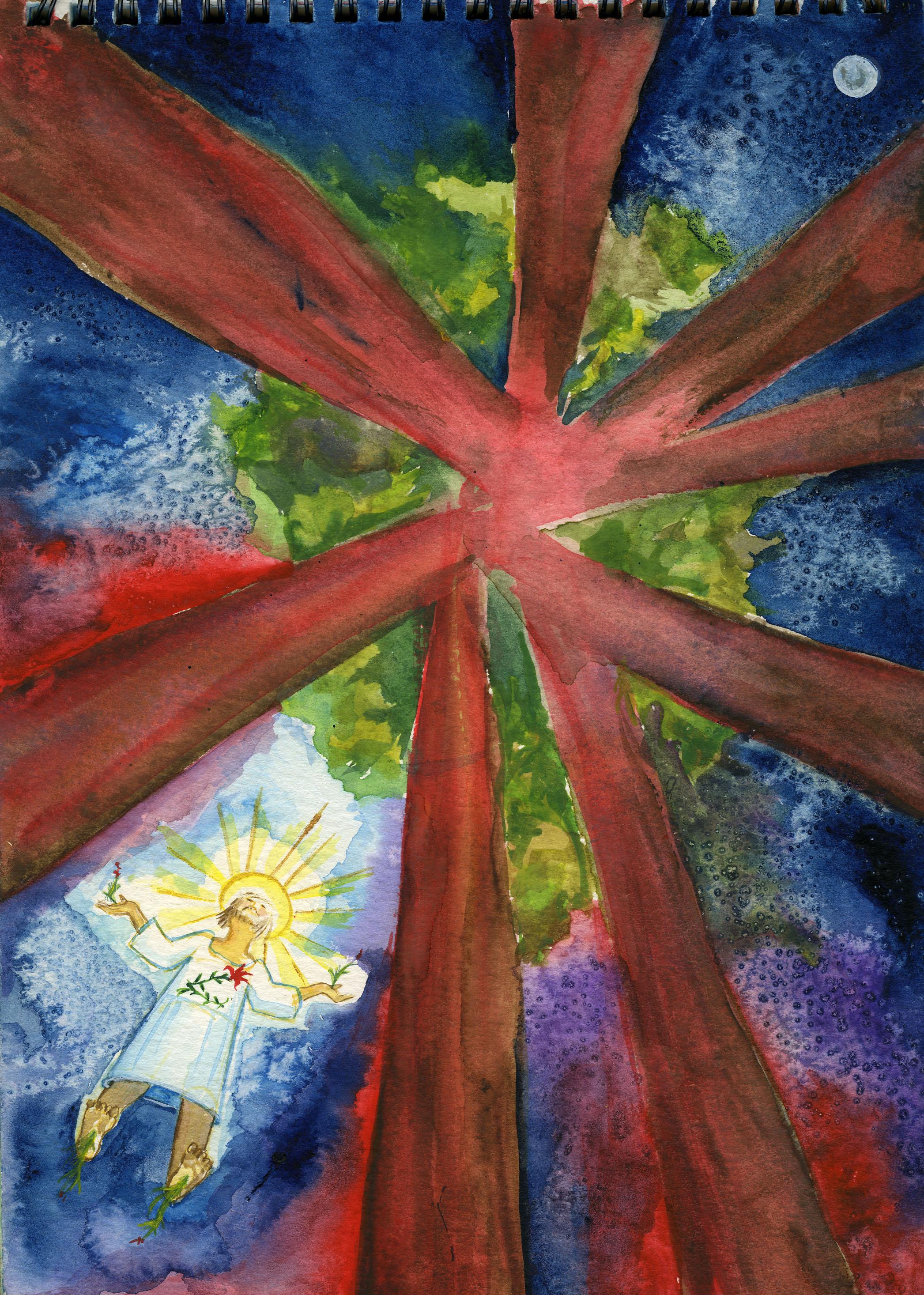 """November 7, 2003 """"Jesus Ascending in the Redwood Forest"""""""