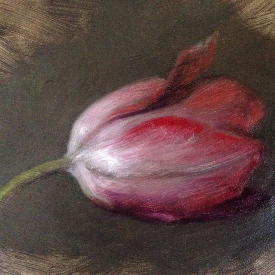 """Sketch of a Tulip"" oil on board by Lauren Kindle, 2016  (This painting will be part of the  EZ2STEAL  small works show on March 25th at Prallsville Mills, Stockton, NJ.)"