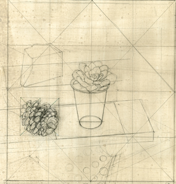 """Study for 'Succulent in a White Plastic Cup' 2007 graphite, felt tip pen, and gouache on hand-toned paper Sheet: 16 3/8 x 18 1/4"""" Image: 13 11/16 x 13 5/8"""""""