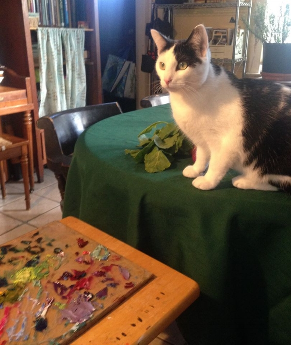 """Sometimes my """"Studio time"""" is at home, if the kids are home sick or something. It's challenging to do art when there are dirty dishes or laundry sitting around, but I make an effort. I also have to watch out for naughty cats who want to jump on my paint palette!"""