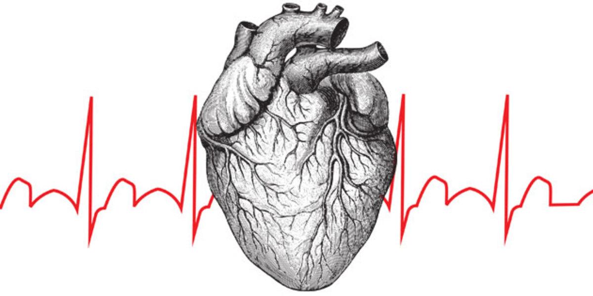 i-heart-crossfit-promo-image.jpg