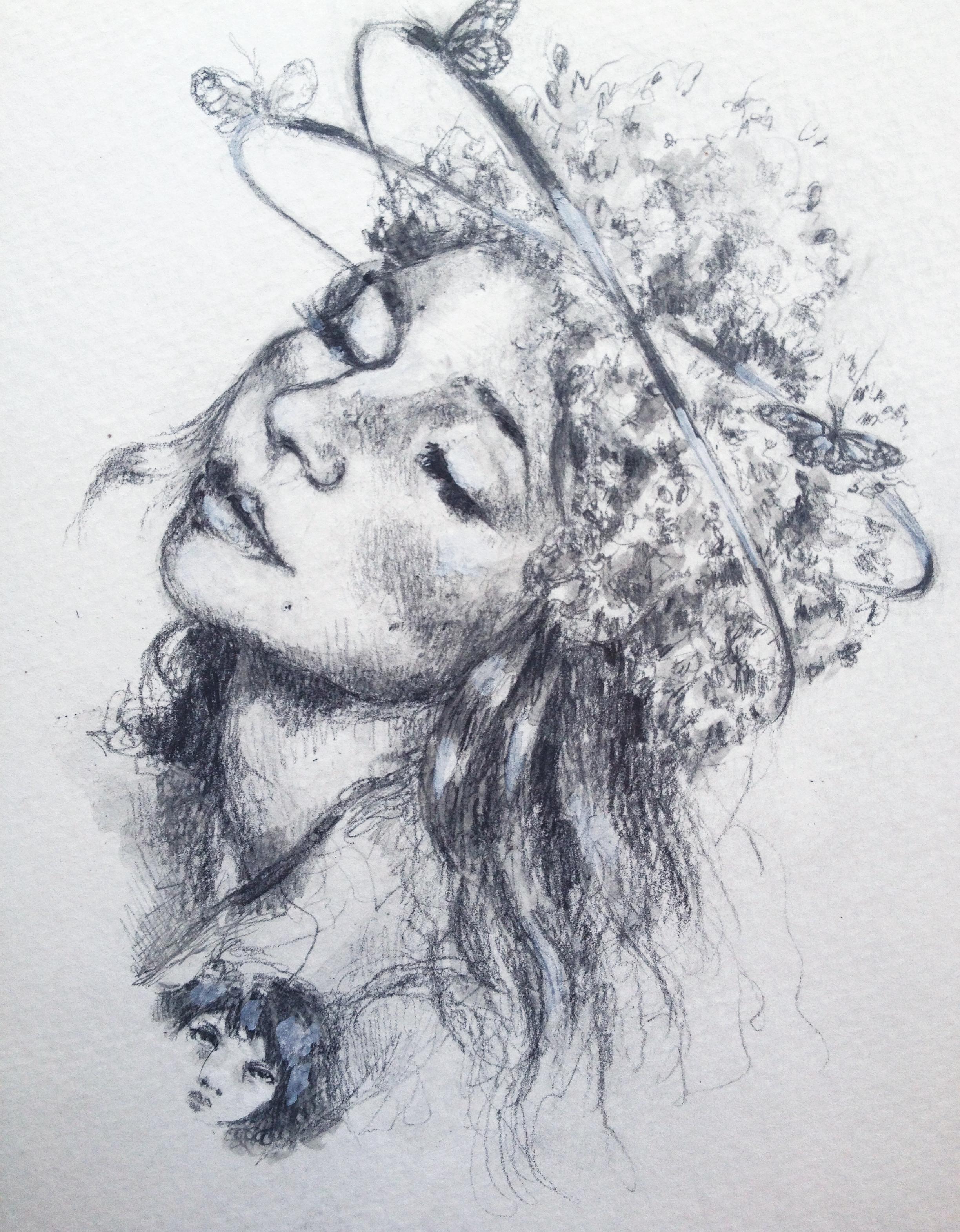Milkweed sketch copy.jpg