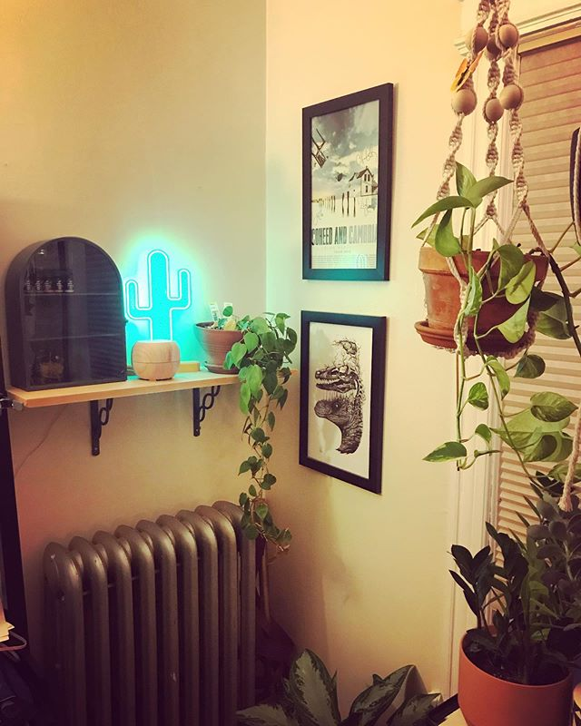 😰 what a crazy week! #installweek has been busy but so fun and so worth it. Just needing to take a quick moment in the corner of my office for a #happybreath and to celebrate the fact that it's almost the weekend 🙌🏼 #artist #displayartist #visualdisplay #visualmerchandising #artistatrest #corner #plantmama #zen #bohemianliving #bohemian #eclecticdecor #mydomain #apartmentherapy #flashesofdelight #bohohome #bohodecor #sodomino #bohostyle #bohemaindecor