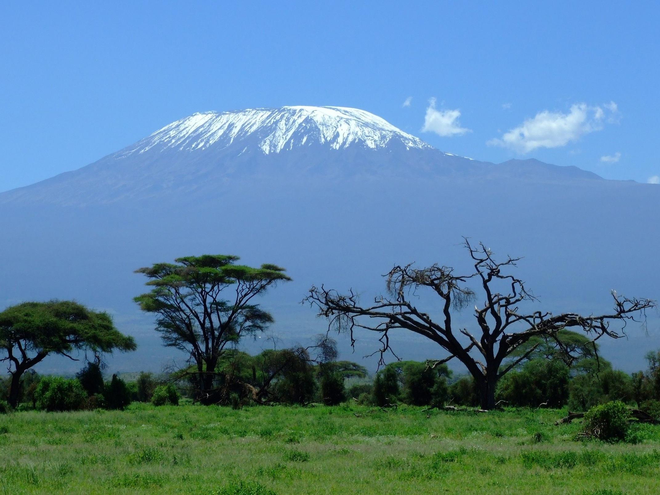 kilimanjaro-1025146.jpg