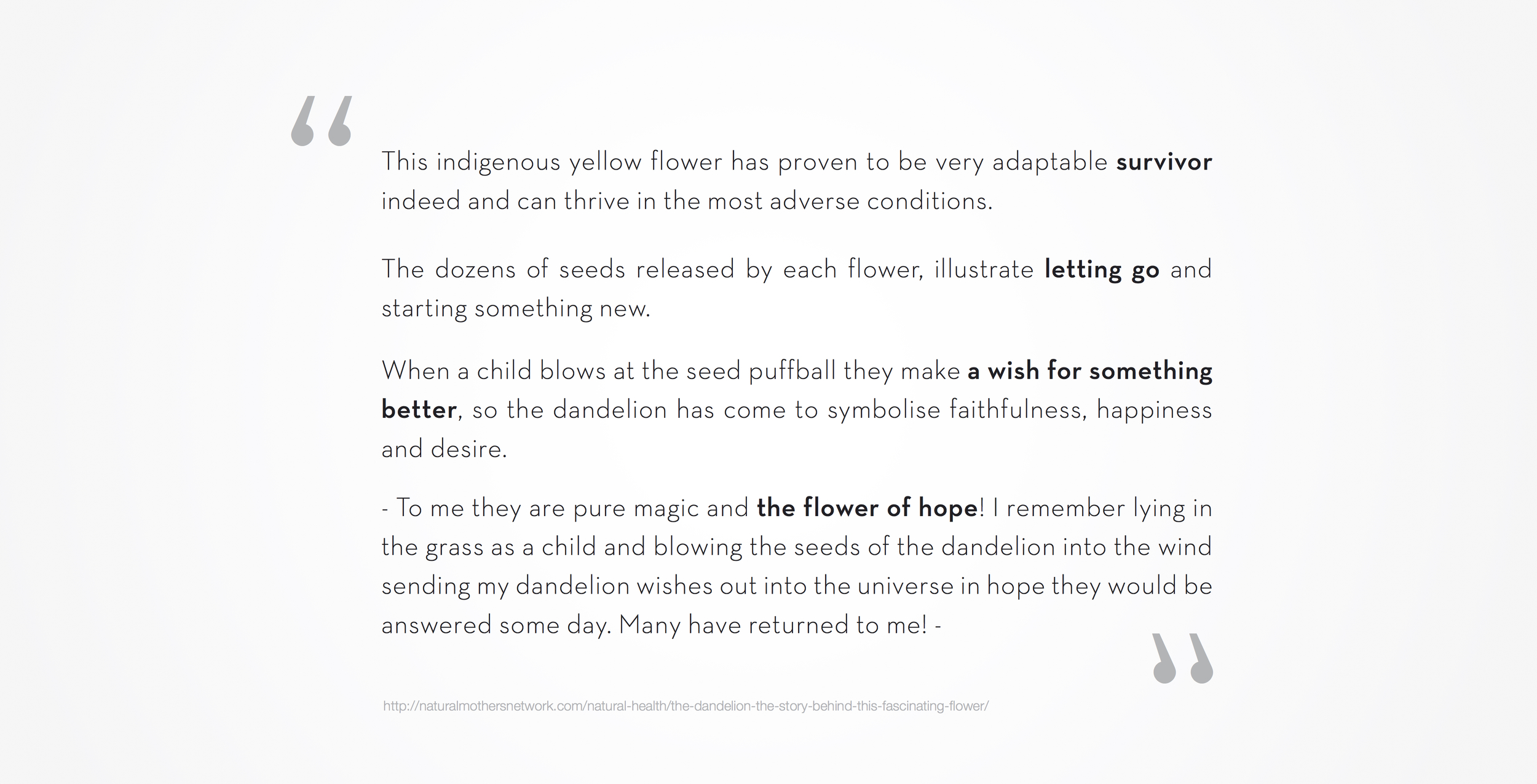 dandelion meaning symbolize logo