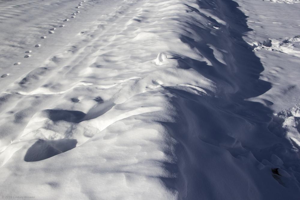Snowdunes