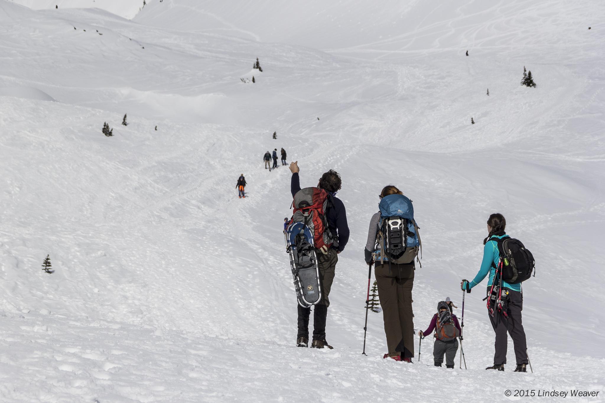 Toward Glacier Vista