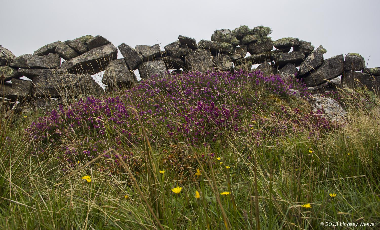 Heather and stone