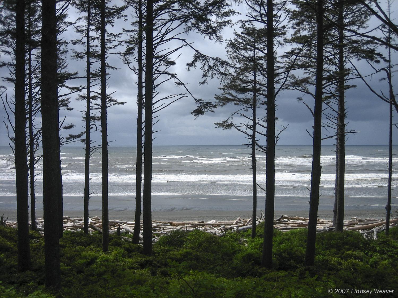 Ocean view, Ruby Beach