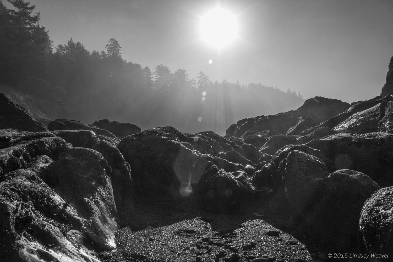Beach 5, black & white