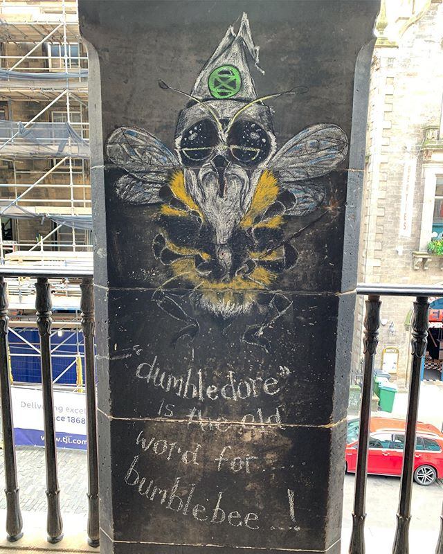 HPBee | Victoria Street, Edinburgh, Scotland (3 September 2019) ||| #harrypottergraffiti #dumbledore #bees #bumblebee #victoriastreet #edinburgh #scotland #diagonalley #graffiti #chalkgraffiti #wizards #harrypotter #buzzzzz #andweavefoundscotland #delayedhoneymoon #honeymoon